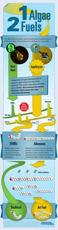 Biofuel Illustration