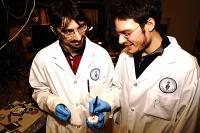 Engineers Valerio Adinolfi (Left) and Riccardo Comin Examine a Perovskite Crystal