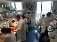 TBSI Lab
