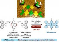 A Single-Step APEX Reaction to Synthesize Uniform Nanographenes