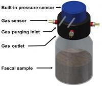 Fecal Fermentation System