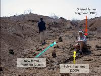 Koobi Fora Kenya Dig Site