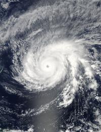 MODIS Image of Maysak