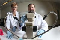 Designer Insecticides Target Mosquito Dopamine Receptors