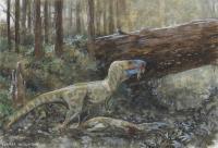 <i>Daspletosaurus</i> Cannibalism