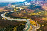 Alaska's Boreal Forests