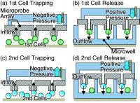 Single-Cell Manipulation
