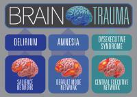 A Neuroscientific Take on Traumatic Brain Injury