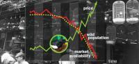 Bird Market Graphic