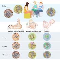 Factors Affecting Infant Microbiome Development