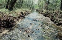 Bear Creek Watershed