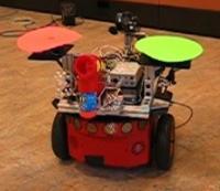 Robot Playmate