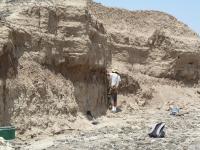 Ancient Sediment