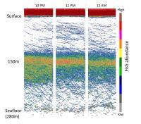 Sonar Data