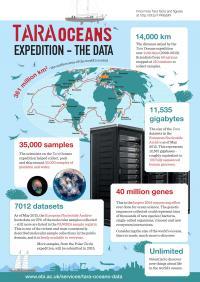 Tara Oceans Expedition Yields Treasure Trove of Plankton Data (19 of 19)