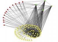 Virus Networks