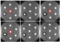 Killing Drug-Resistant Bacteria