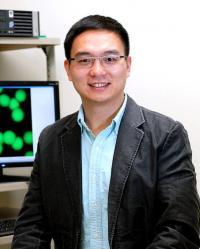 Zhen Gu, Ph.D., University of North Carolina Health Care