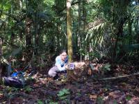 Researcher Maíra Benchimol Deploying a Camera Trap