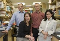 Arsenic Inhibits DNA Repair