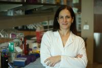 Maria Clara Franco, University of Central Florida