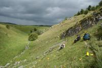 Semi-natural Grassland