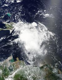 Terra Image of Erika