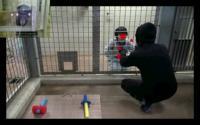 Ape Watching Revenge Film