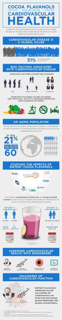 Cocoa Flavanols Maintain Cardiovascular Health