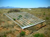 Desert Grassland Study Plot