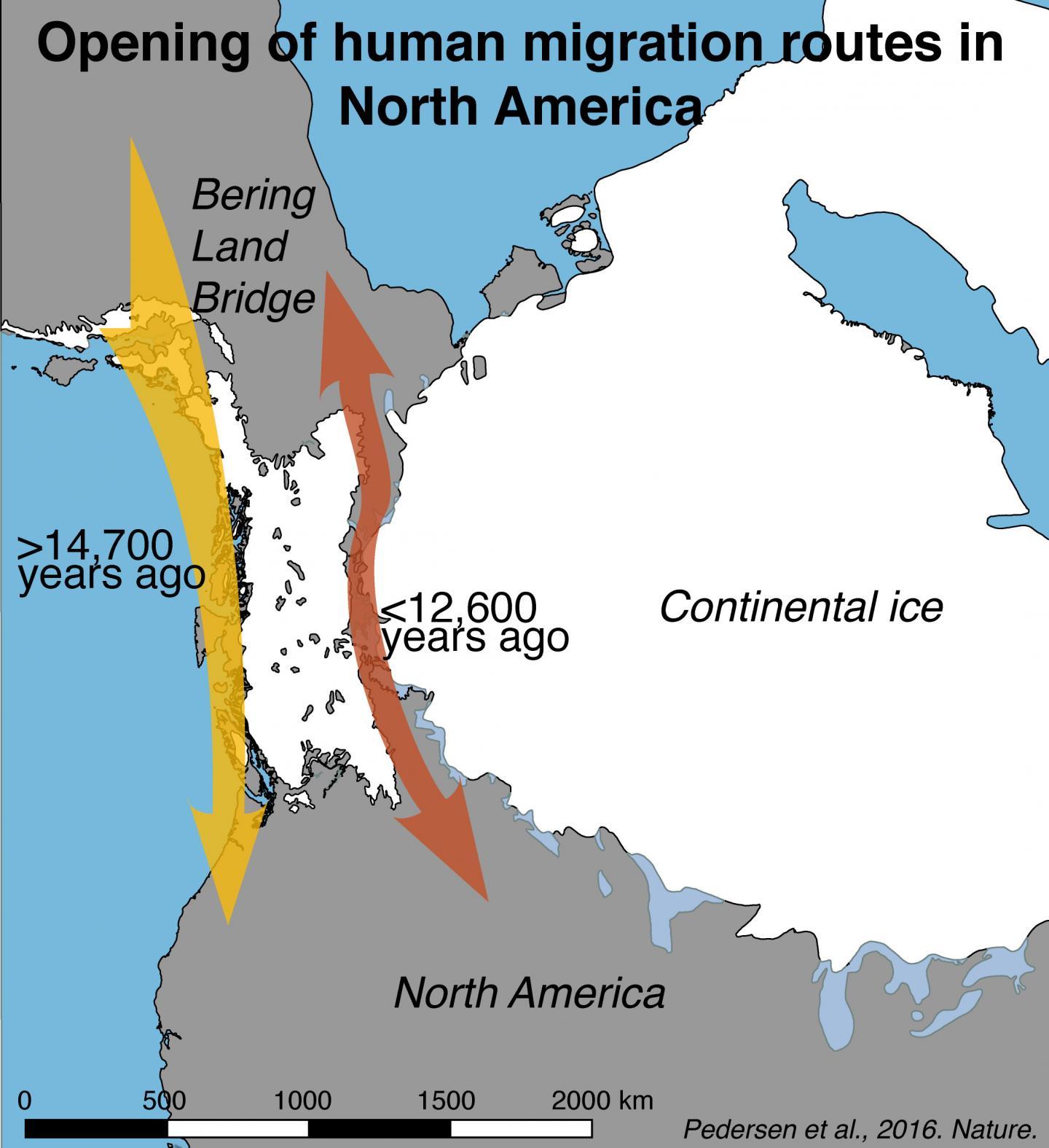 Ученые сумели описать путь расселения старинных сибиряков