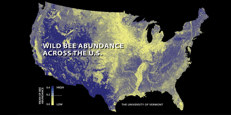 Bee Decline Threatens US Crop Production EurekAlert Science News - Us crop map
