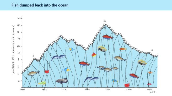 IMAGEM: REJEIÇÕES DA PESCA MARINHA MUNDIAL: UMA SÍNTESE DE DADOS RECONSTRUÍDOS PELO SEA AROUND US. CRÉDITO: UBC PUBLIC AFFAIRS