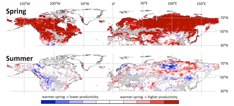Observações de satélite mostram que primaveras mais quentes resultam em maior produtividade da vegetação na primavera, mas (em muitas regiões) em menor produtividade no verão e no outono. Crédito: TU Wien