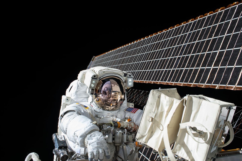 NASA Twins Study finds spaceflight affects gut bacteria