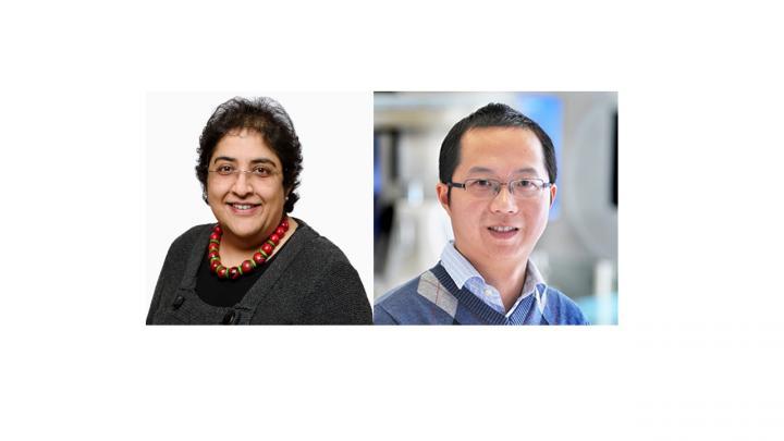 SRC-1 gene variants linked to human obesity