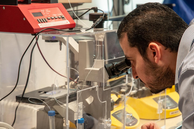 UBC Okanagan engineers make injectable tissues a reality