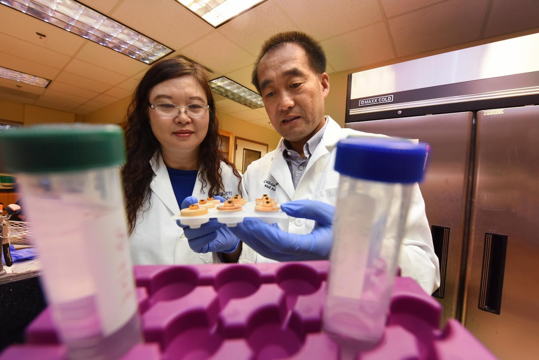 Sights are set on better understanding vision-damaging keratoconus | EurekAlert! Science News