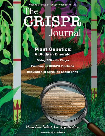 Broad Institute researchers use novel field-ready CRISPR platform to detect plant genes | EurekAlert! Science News
