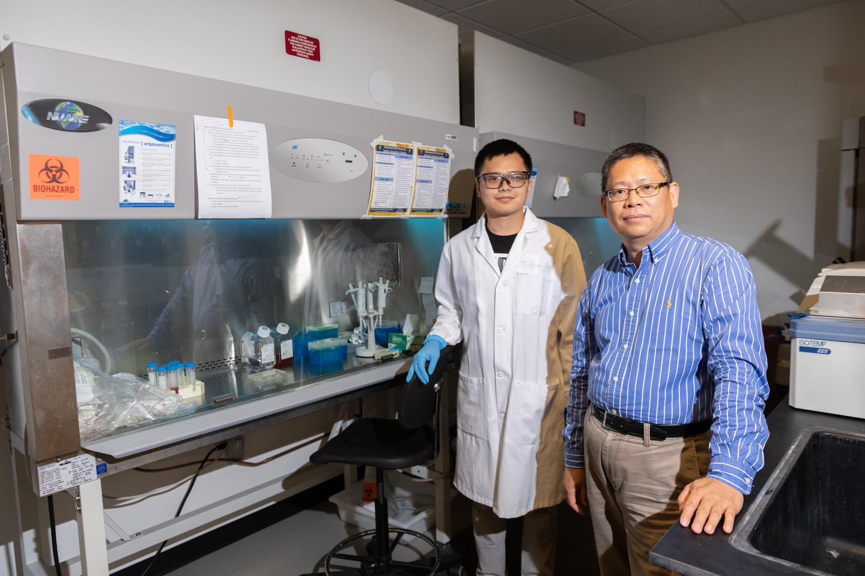 Nanoscale 'glass' bottles could enable targeted drug delivery | EurekAlert! Science News