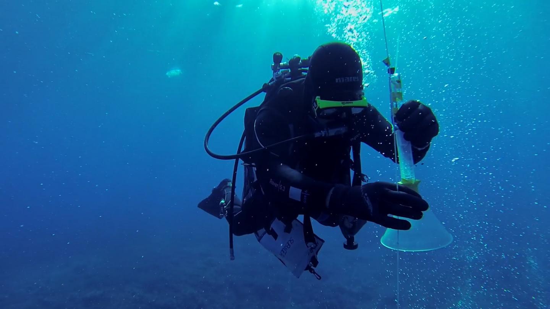 Monitoring CO2 leakage sites on the ocean floor | EurekAlert! Science News