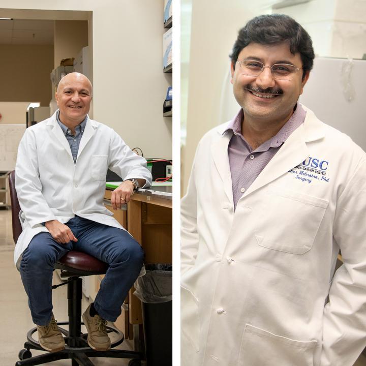 New lipid signaling target may improve T cell immunotherapy   EurekAlert! Science News