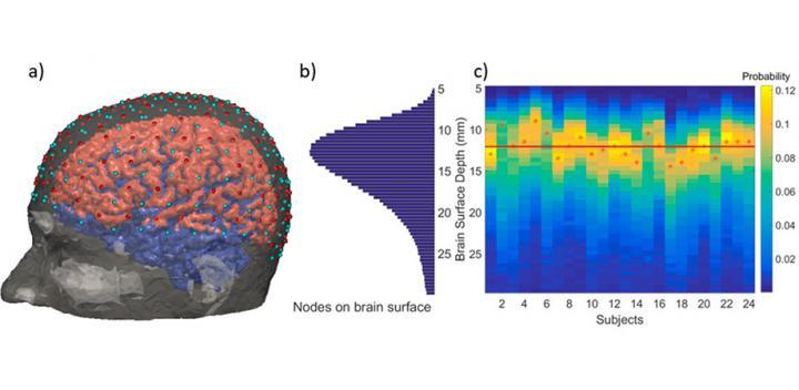 Improved functional near infrared spectroscopy enables enhanced brain imaging   EurekAlert! Science News