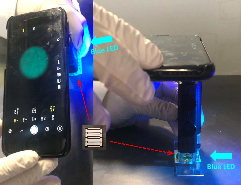 Using a smartphone to detect norovirus | EurekAlert! Science News