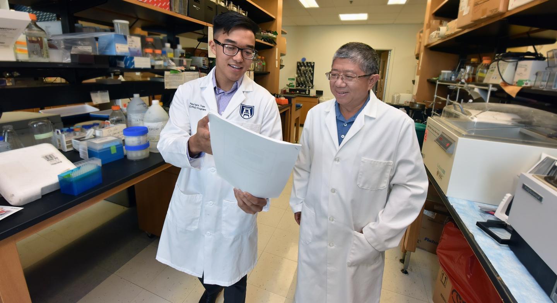 More predictive genetic risk score sought for type 1 diabetes | EurekAlert! Science News