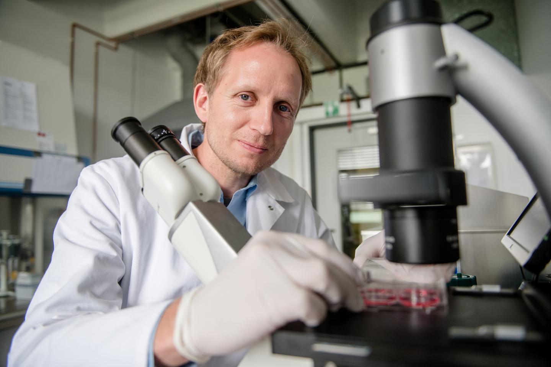 Pros and cons of genetic scissors | EurekAlert! Science News