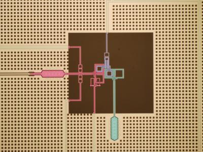 Quantum particle