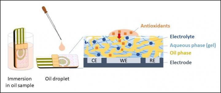Newswise: Convenient antioxidant capacity measurement of food