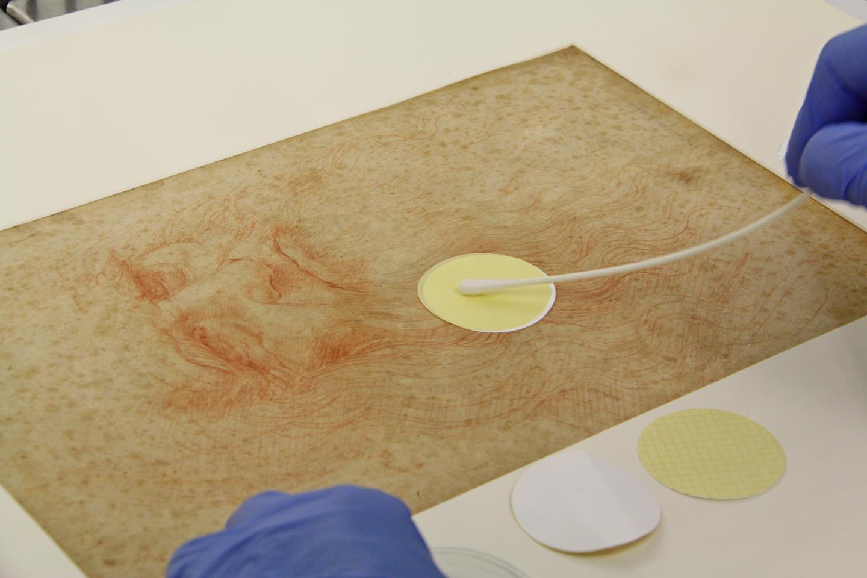 Newswise: The microbiome of Da Vinci's drawings