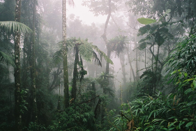 Itai National Park, Brazil